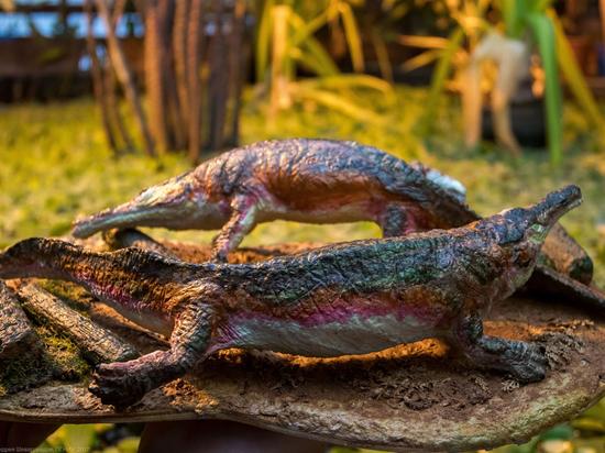 Эстемменозух и компания. В Ботаническом саду Пермского госуниверситета открывается экспозиция древних ящеров